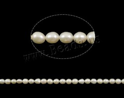FREE SHIPPING Natural Cultured Freshwater Rice Pearl Beads,A Grade ,white color, 5mm, Great for Jewelry Making ,Loose beads(China (Mainland))