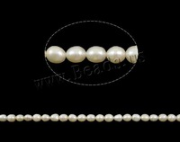 FREE SHIPPING Natural Cultured Freshwater Rice Pearl Beads,A Grade ,white color, 5mm, Great for Jewelry Making ,Loose beads
