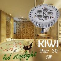 Wholesale Hot selling 5W Par30 Par 30 LED Lamp Bulb E27 Spot Light Cool/ Pure / Warm White 100-240V Free Shipping