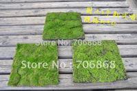 "12""Wx12""L Artificial Preserved Moss Mat - Set of 12"