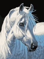 Diy digital oil painting picture frame white horse 30 40 14 decorative painting