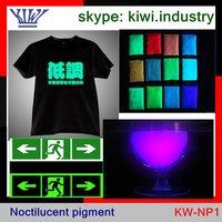Long lasting glow in dark material Noctilucent powder pigment