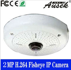 NEWEST Eyefish Security camera ip thermal camera(China (Mainland))