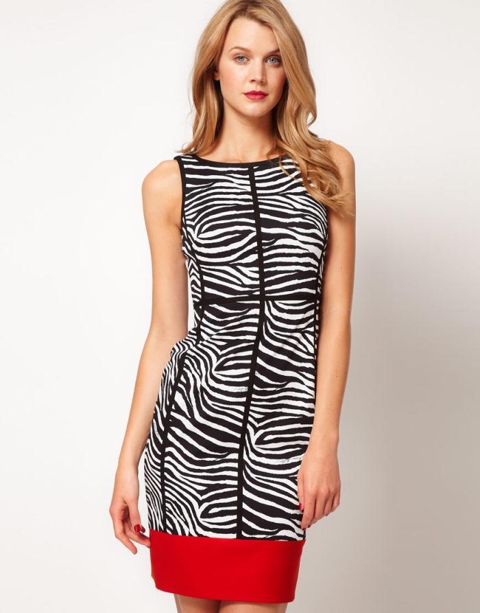 Zebra Plus Size Prom Dresses 83