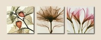 3Panels Interesting Huge Modern Painting Canvas Charm Large Contemporary Wall Hanging Art Flower 25 (No Frame)( pt25)