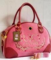 2014 Hot Sale Fashion quality pet bag backpack dog pack pet suitcase egregiousness bag