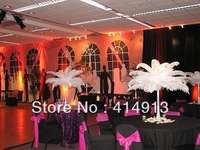 wholesale FREE SHIPPING 300pcs/lot 14-16''Ostrich Feather Plume
