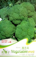 5 Pack 125+ Seeds Heirloom  Organic Vegetable Green Cauliflower Broccoli Seeds C007