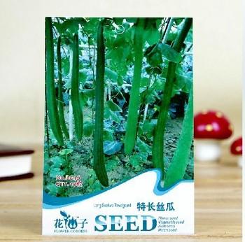 10pcs/bag long suakwa towelgourd green vegetable seeds DIY home garden free shipping