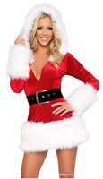 Factory Price Free Shipping Wholesale Sexy Lingerie Sex Dress Sleepwear Adult women's Sexy Christmas Outfit Sex Costume