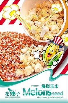 5 Pack 150 Seed Pop Corn Burst Maize Seeds Organic Healthy Foodstuff B045
