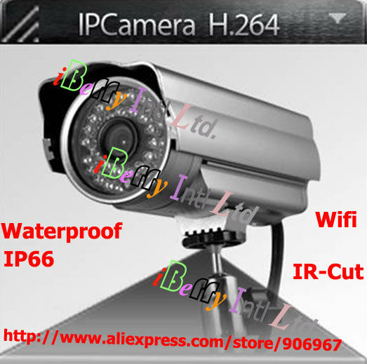 H.264 Wireless Outdoor IP Camera Weatherproof Waterproof IR Camera IR Cut SD Card Slot support ISO Android Smartphone Viewing(China (Mainland))