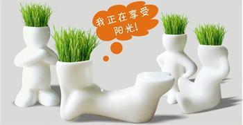 10pcs /lot Home Decoration DIY White Man Magic grass planting,Creative Gift Plant Hair man