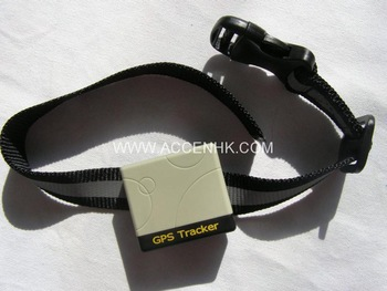 Free Shipping Pet GPS Tracker with collar for track directly on Google Earth on mobile phone