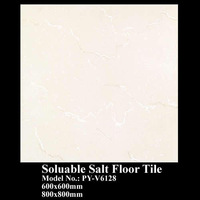 soluable salt floor tile, ceramic tiles PY-V6128