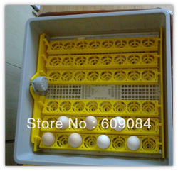 cheap automatic mini hatchery machine & equipment for chick HT-48 48 eggs family type(China (Mainland))