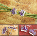 New Arrival Fashion Stud Earrings With Shining Purple Zircon and Rhinstone Crown For Elegant Ladies,Girls Free Shipping By DHL