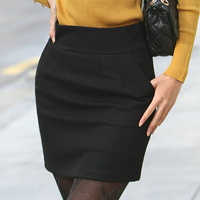 2012 OL outfit elegant slim hip small a woolen bust skirt tailored skirt
