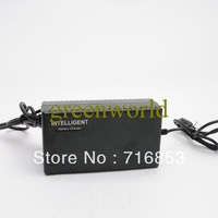 Free Shipping Brand New 74V 24Ah 2.9A Input 110V Valtage for Electric Scooter Bike/ E-bike Guaranteed 100%