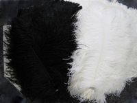 """Free shipping 12 pcs/lot Good 35-40cm 14-16"""" fluffy White Black ostrich plumes feather Ostrich feathers Wedding centerpieces"""