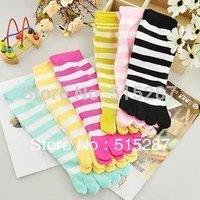 Free shipping  hot five fingers socks stripe cotton socks  cartoon women's sock