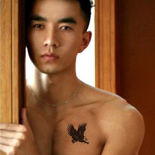 36pcs Good Quality Eagle Temporary Tattoo Body Sticker, Nontoxic and Tasteless, Fashion Design  60113