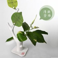 Flower message seat vase day gift free air mail