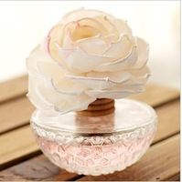 Lazy painted corner creative household glass vase dried flower fragrance smokeless no fire essential oil fragrance suit 35544