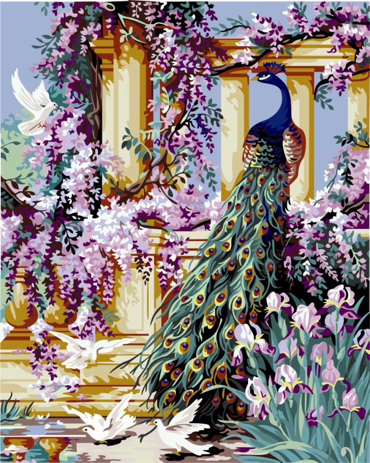 Pavão 90 decorativo animal da pintura 60 da pintura a óleo digital de Diy