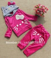 Hello Kitty Girl's Tracksuits Children Velvet Kitty cat sport suits Girl's cat Hooded sweater + cat pp pants
