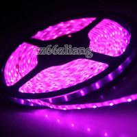 Pink 5M 300LED Waterproof 3528 SMD 60leds Meter Flexible LED Strip Lights 12V DC