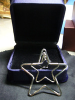[Free Shipping]Fashion Limited edition Star pendant Necklace jewelry