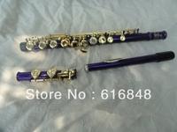 Wholesale - Purple Silver Grant YFL-271 S 16 hole, a very good birthday present plus the E key obturator flute stock