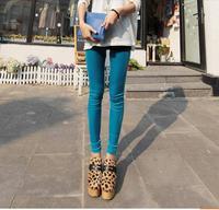 Free Shipping Hot Sale 2013 New Pants Slim Thin Velvet Leggings  XX21373404012