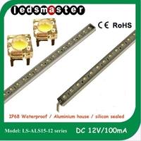IP68 Waterproof 3528 0.5W 1m SMD 30w LED 120 degree Strip Light 12v DC or 24v DC,cool white or warm white
