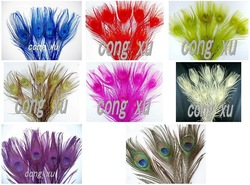 Free shipping Attractive~ Mix Collor peacock tail feather,about /10-12in(China (Mainland))