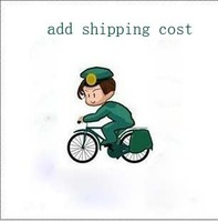Free shipping   add shipping costs