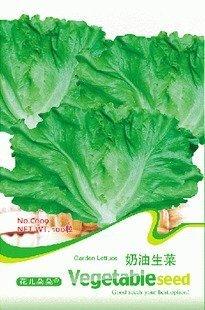 5 verpakkingen 500 zaden tuin sla groentezaden gratis verzending c009