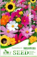 5 Pack 1000 Seed Fast growing Wildflowers Mix colorful Seeds Flower Seed K008