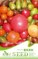 Free Shipping Mix different color Tomato Seeds 5 packs per lot  / 20pcs per pack  fruit seeds vegetable seeds
