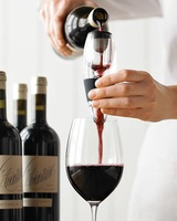 Portable Wine Magic Decanter,Red Wine Aerator Essential,Bag Hopper And Filter