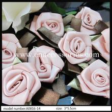 popular hot pink rose