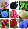 9 COLORS 1800 SEEDS ROSE SEEDS (200 SEEDS EACH COLOR) WITH FULLY SEALED BAG WITH SOWING INSTRUCTION ONLY $5.99