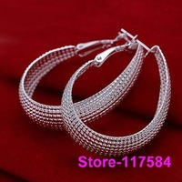E064 925 sterling silver 2013 fashion jewelry earrings for women Pen earrings /feja nvqa