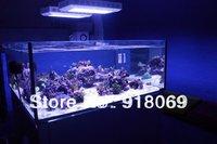 Marine Aquarium Lighting with black housing