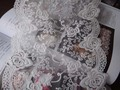 flower embroidery mesh lace,18cm width in size,embroidery lace,2yards/lot(China (Mainland))