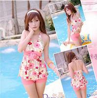 Swimwear female split swimsuit hot spring swimwear small swimwear Free Shipping