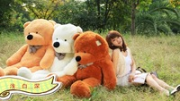 Free Shipping Hot sale great choice for gift 80cm teddy bear plush toys stuffed toys