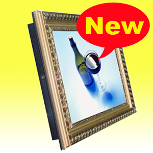 Idea 19 inch WIFI/Network lcd advertisement broadcaster (China famous brand)(China (Mainland))