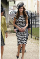 New Fashion Princess Kate Formal Elegant dresses Print Slim , FREE SHIPPING !